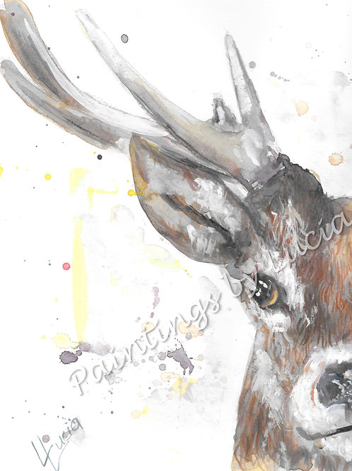 A4 Deer Watercolour Original