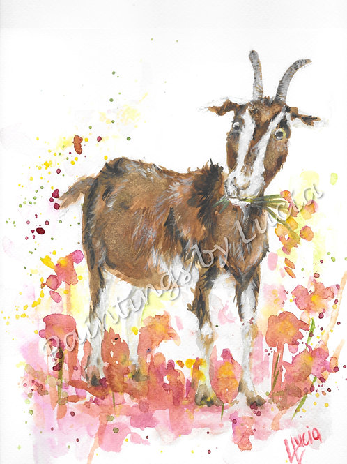 9x12 Goat Watercolour Original