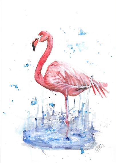 flamingo .jpeg