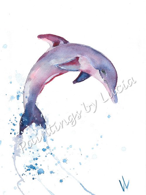 A4 Dolphin Watercolour Original