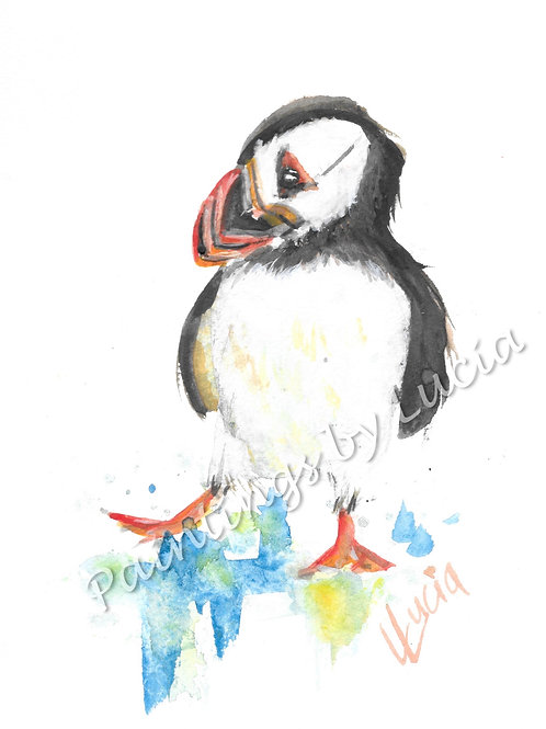 A5 Puffin Watercolour Original