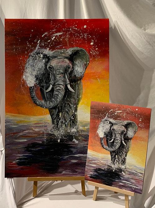 Elephant Acrylic