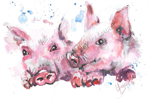 A4 Piglets Watercolour Original