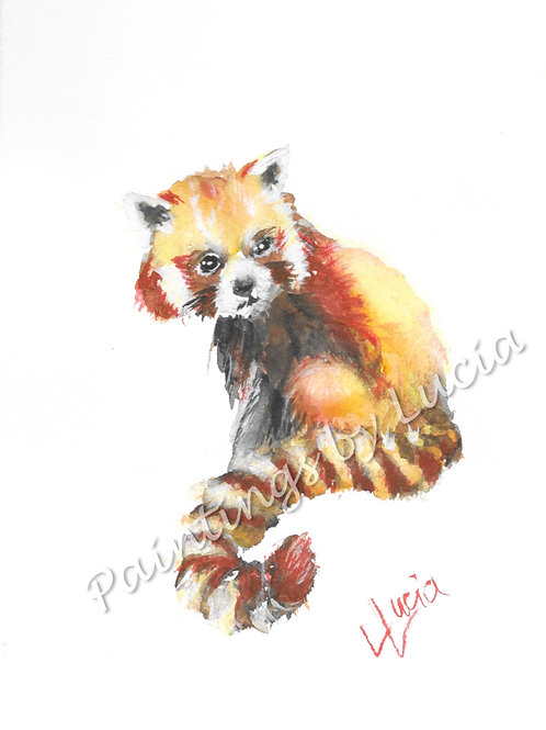 A5 Red Panda Watercolour Original