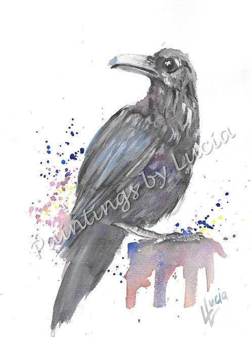 A4 Crow Watercolour Original