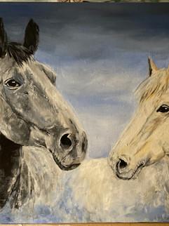 Acrylic Horses