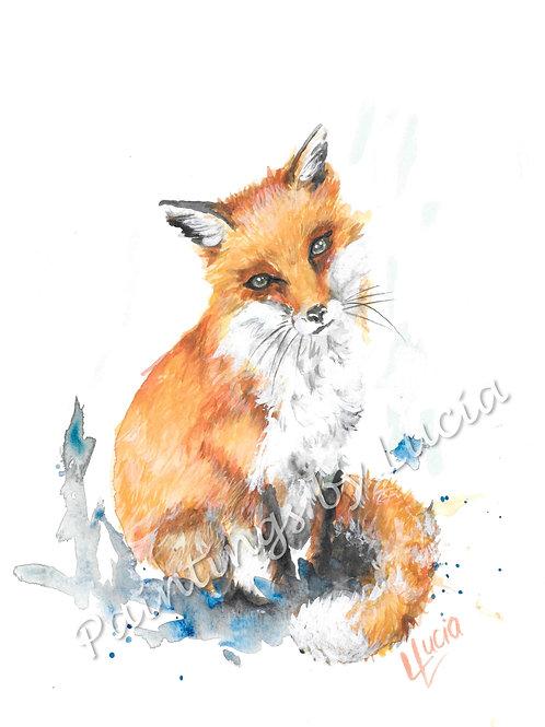 Fox (sitting)