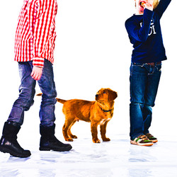 Broertjes-met-hondportret