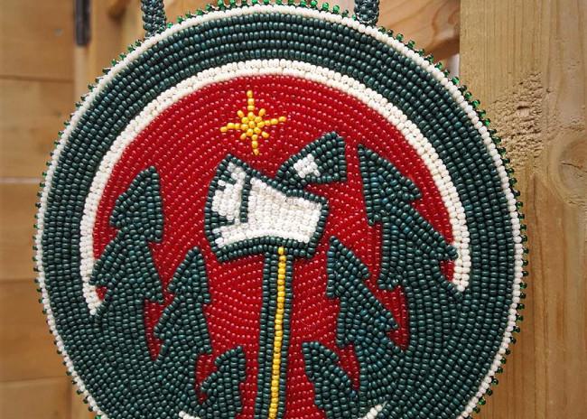 Minnesota Wild inspired custom medallion