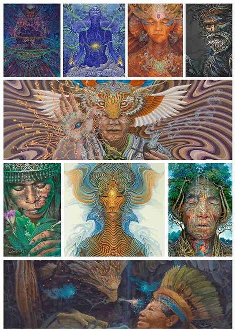 Set of 10 Postal cards - Luis Tamani