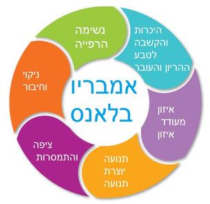 עקרונות אמבריו.jpg