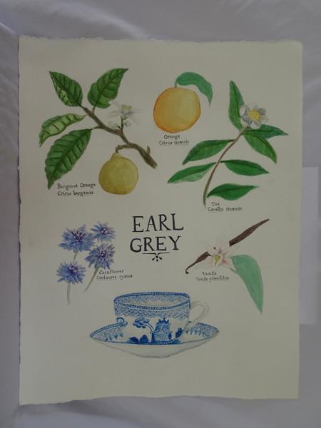Earl Grey, 2017