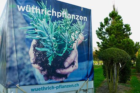 main_pflanzenlieferung_neu.jpg