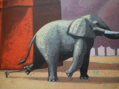 L'elefante è in pericolo!