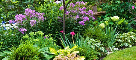 How to care for your garden and yard in every season.