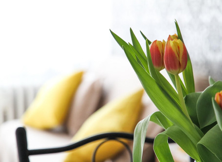 Why You Should Stage Before Hosting an Open House