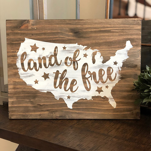 Land of the Free 12x16
