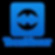 TeamViewer-300x300.png