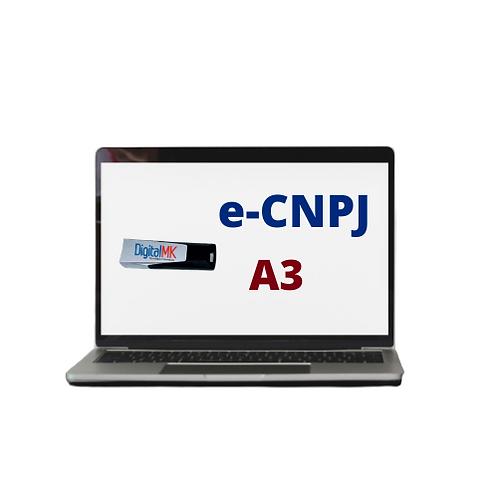 e -CPF A3   TOKEN  12 MESES