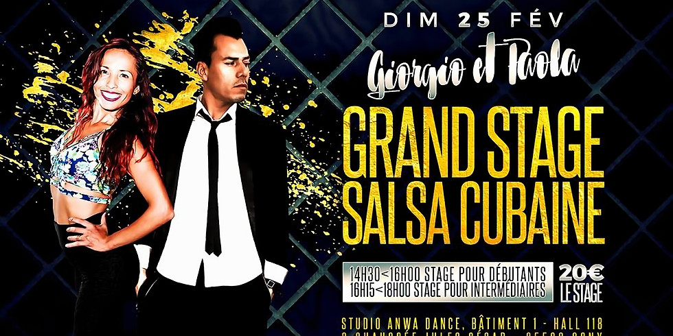 Grand stage de salsa Cubaine