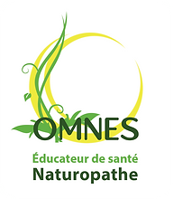 Logo OMNES 2021