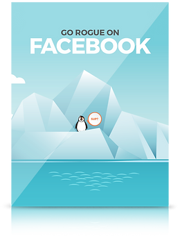 Facebook Course Cover.png