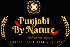 Punjabi By Nature-5 (2).png