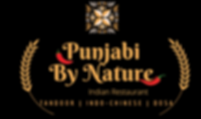 Punjabi By Nature-5 (1).png