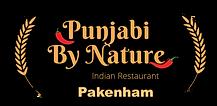 Punjabi By Nature-5 (1).png