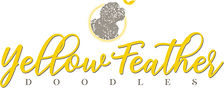 Yellow Feather Doodles Color Logo.jpg