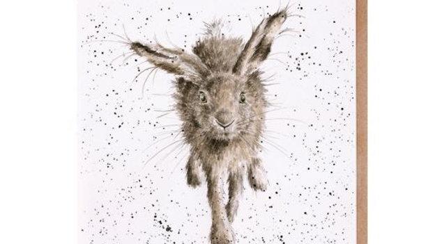 'Little Grey Hare' Birthday card