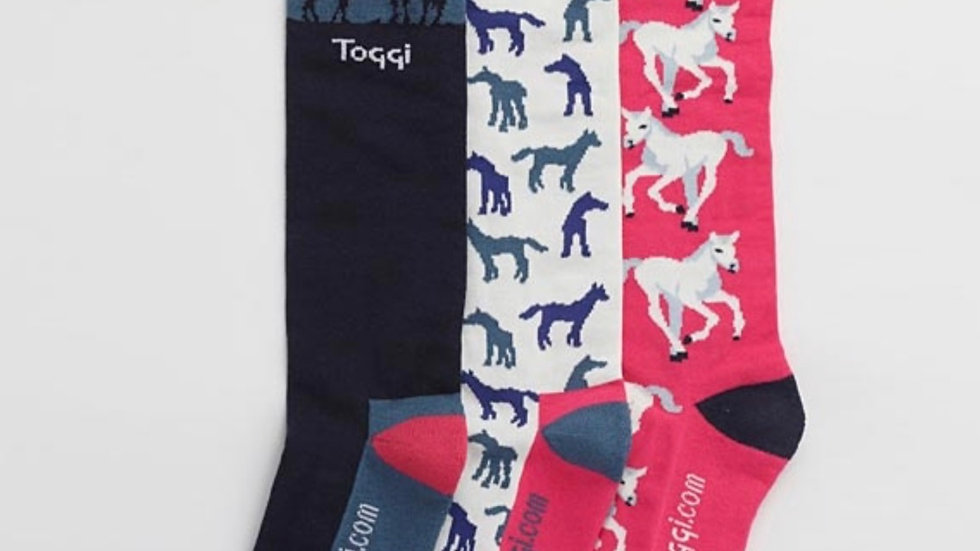 Toggi Atterby Foal Socks