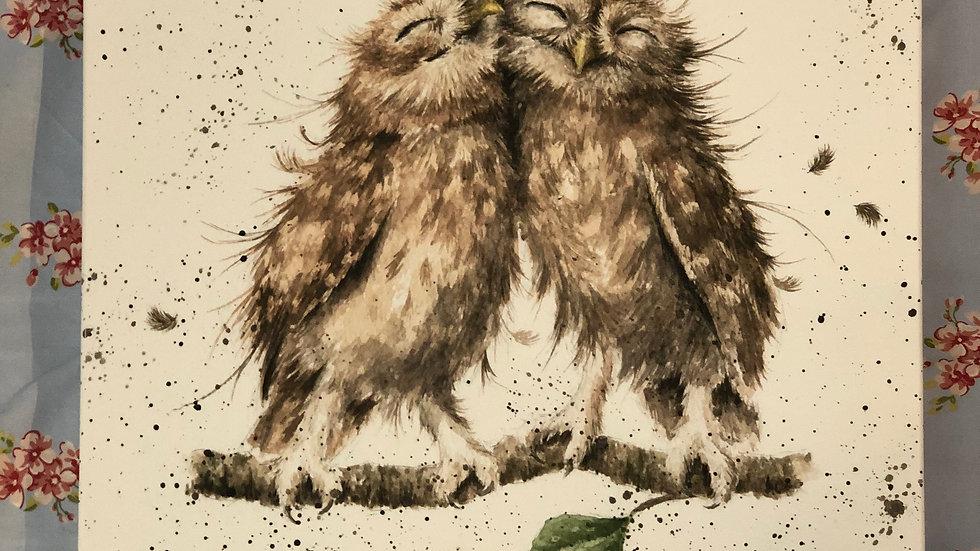 Wrendale owl's canvas 20cm x 20cm