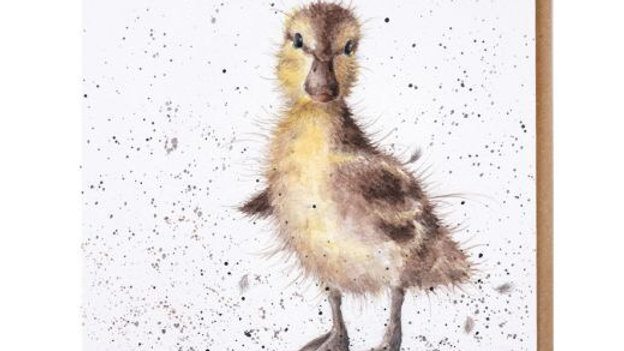 'Just Hatched' card