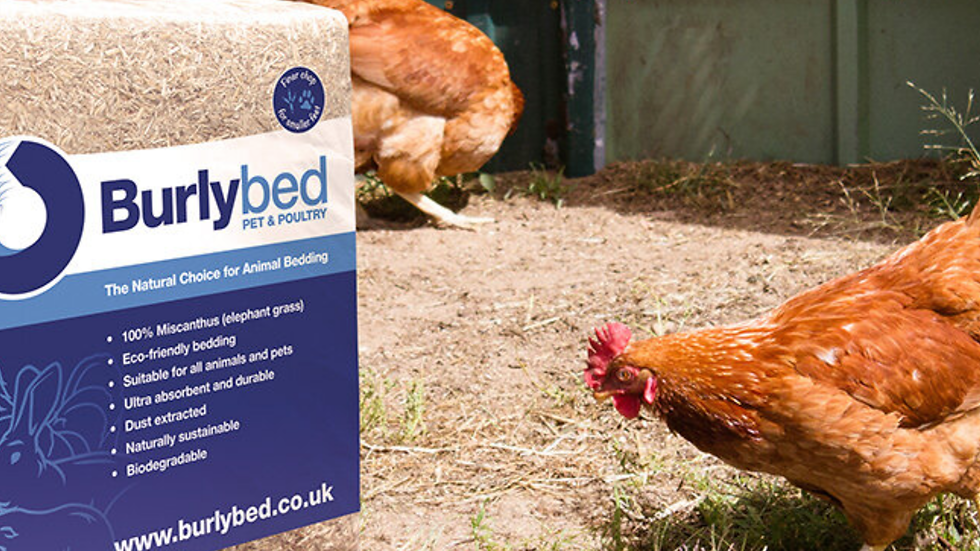 Burlybed pet & poultry