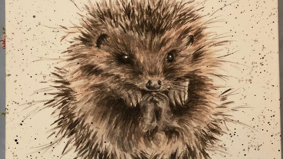 Wrendale hedgehog canvas 50 x 50cm