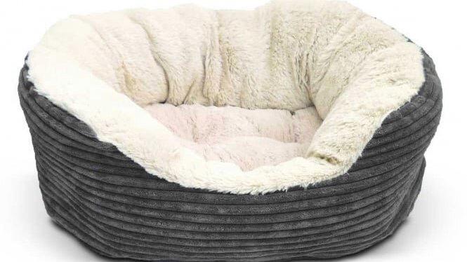 Rosewood 40 Winks Grey Cord Jumbo Bed 60cm