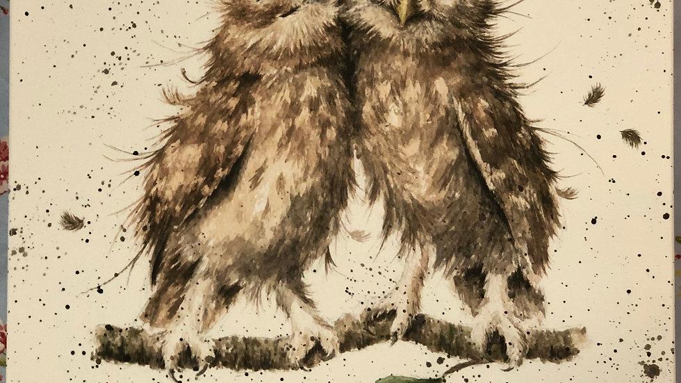 Wrendale owl canvas 50 x 50cm