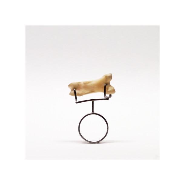 「 換骨奪胎の指環 」 2015
