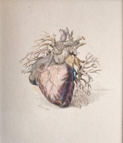 「 Heart 」2021