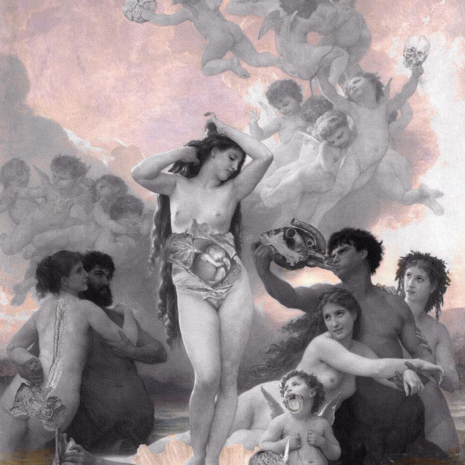 「 Birth of Venus 」2013