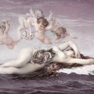 「 Birth of Venus 」2016