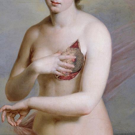 「 Venus anatomy 」2017