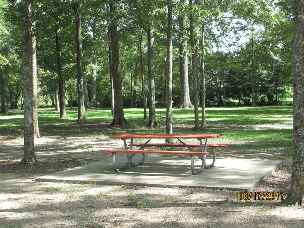 BREC Park Sharp Road Picnic Area