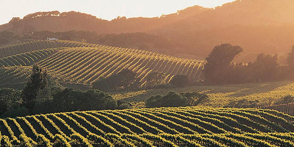 Beaujolais and Burgundy Wine Tasting