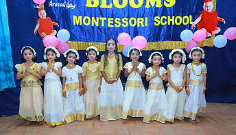 Blooms Montessori School