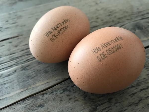 Das Ei in HEImatsünde