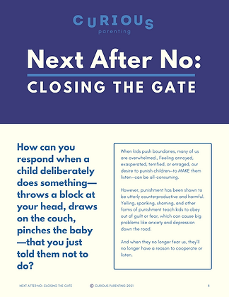 Next After No: Closing The Gate