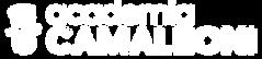 Academia Camaleon_Logo branco (1).png