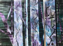 Cálica 13, acrylic on canvas, 50x60cm